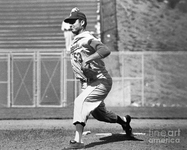 1950-1959 Art Print featuring the photograph Don White by National Baseball Hall Of Fame Library