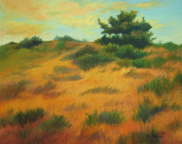 Cape Cod Scene Art Print featuring the painting Province Lands Cape Cod by Phyllis Tarlow