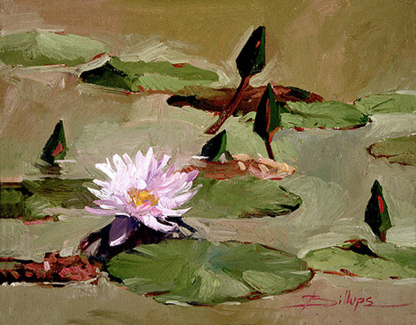 Water Lily Paintings Art Print featuring the painting Tomorrow's Blooms- Water Lilies by Betty Jean Billups