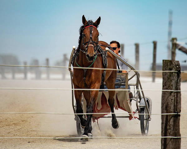 Country Art Print featuring the photograph Trotter Training by Scott Smith
