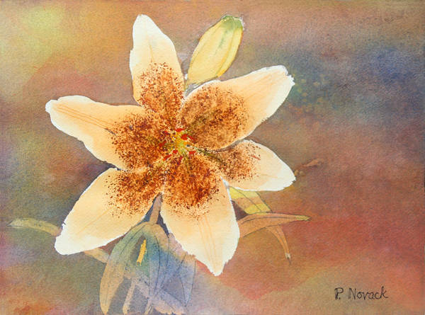 Lily Art Print featuring the painting Asiatic Lily by Patricia Novack