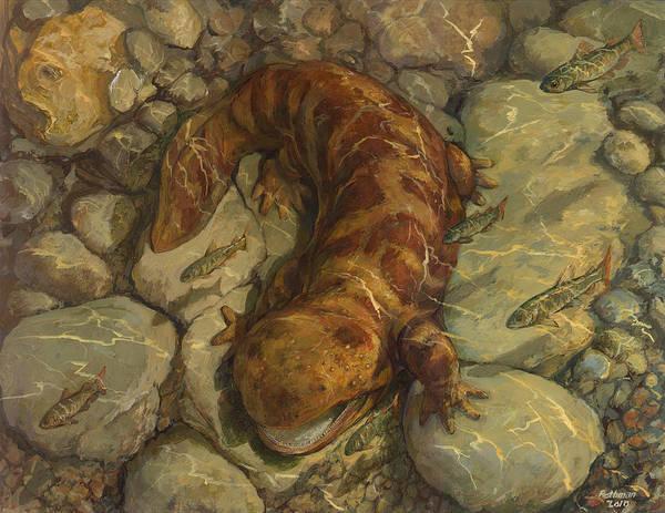 Animal Watercolor Painting Red Salamander Art Print