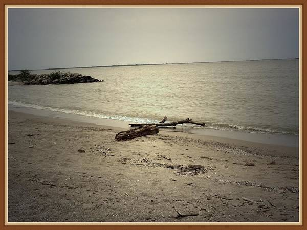 Sea Art Print featuring the photograph Lonely Seashore by Anandi Godse
