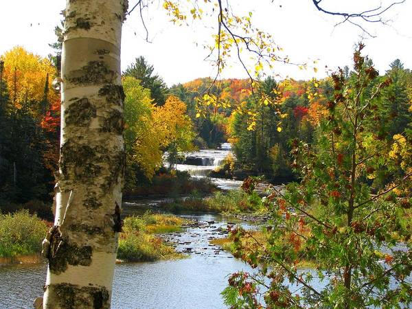 Tahquamenon River Art Print featuring the photograph Lower Tahquamenon Falls In October No 1 by Keith Stokes