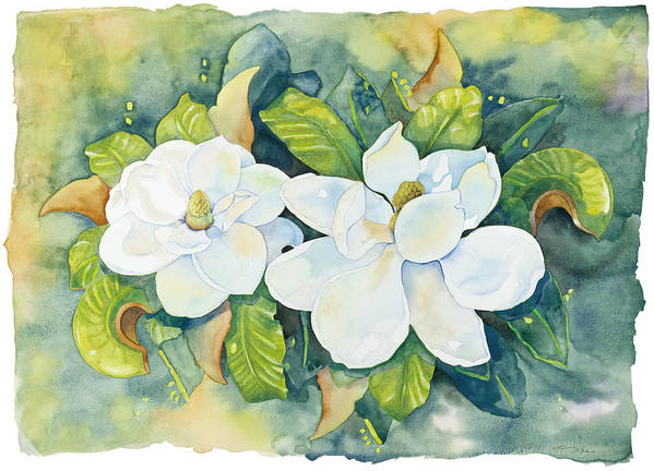 Flowers Art Print featuring the painting Magnolias by Cathy Locke