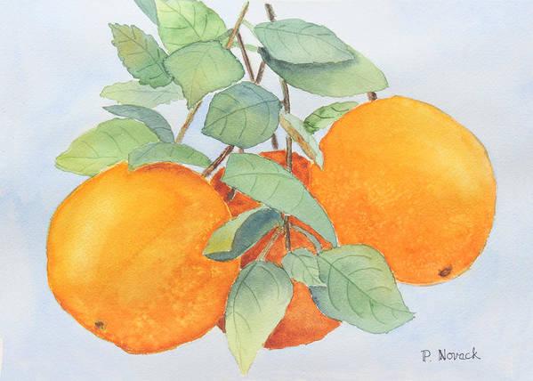 Orange Art Print featuring the painting Orange Trio by Patricia Novack