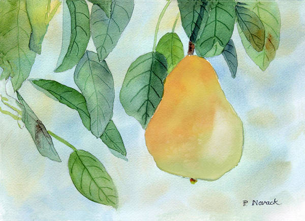 Fruit Art Print featuring the painting Ready To Pick by Patricia Novack