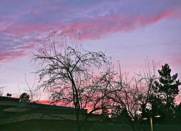 Sunsets Art Print featuring the photograph Silverton Sunset by Liz Santie