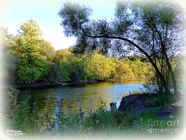 Water Art Print featuring the photograph The Boat Dock by Rennae Christman