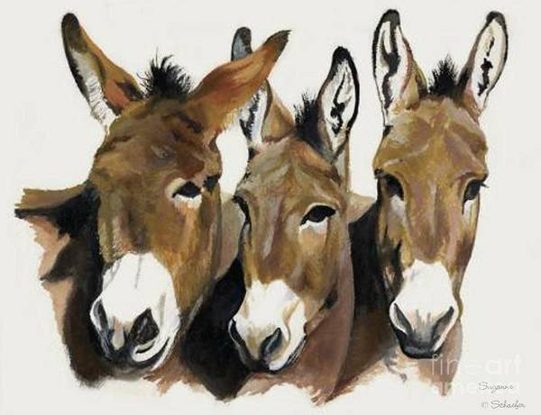 Donkeys Art Print featuring the painting The Brothers Three by Suzanne Schaefer