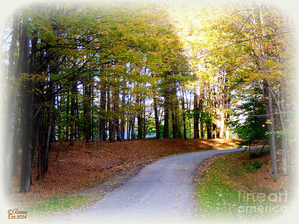 Landscape Art Print featuring the photograph The Suns Rays by Rennae Christman