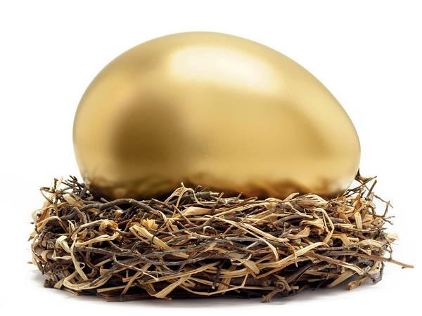 Horizontal Art Print featuring the photograph Gold Egg In Nest by John Kuczala