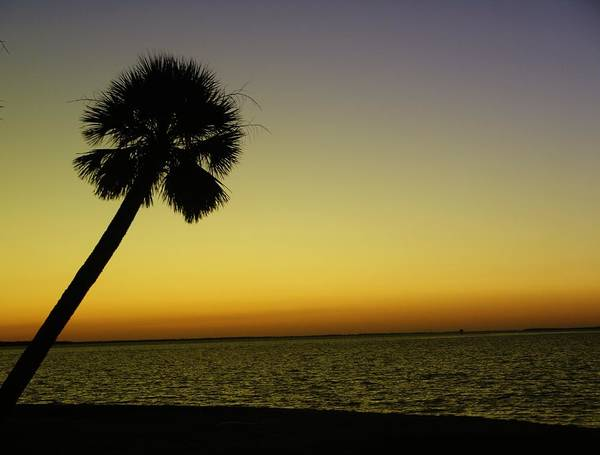Tropical Art Print featuring the photograph Crayola Sunset by Florene Welebny
