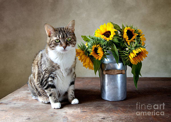 Cat Art Print featuring the painting Cat and Sunflowers by Nailia Schwarz