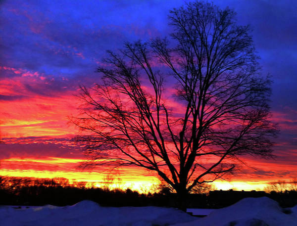 Sunrise Art Print featuring the photograph Driveby Shooting No. 8 - Valentine's Sunrise by Christine Segalas