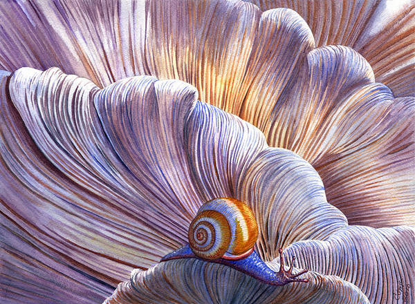 Mushroom Art Print featuring the painting Etherial by Catherine G McElroy