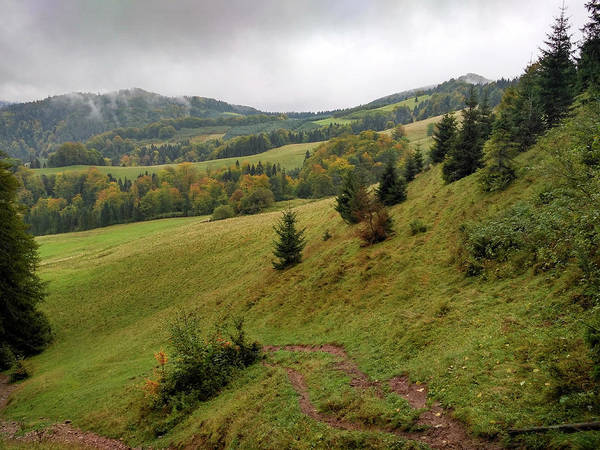 Pieniny Art Print featuring the photograph Highlands Landscape In Pieniny by Arletta Cwalina