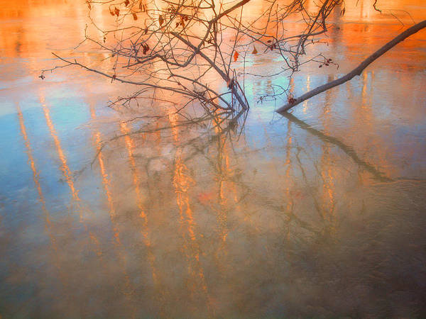 Ice Art Print featuring the photograph Ice Reflections 2 by Tara Turner