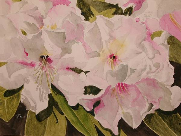 Pink Art Print featuring the painting In The Pink by Jean Blackmer