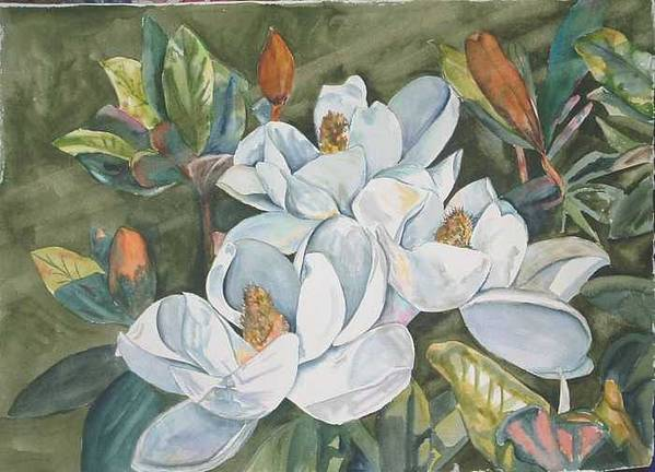 Watrercolor Art Print featuring the painting Magnolias five by Diane Ziemski