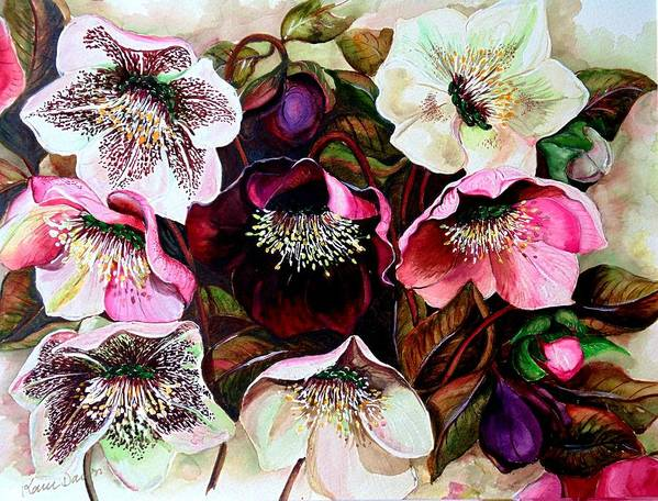 Pink Floral Art Print featuring the painting Mixed Hellebore by Karin Dawn Kelshall- Best