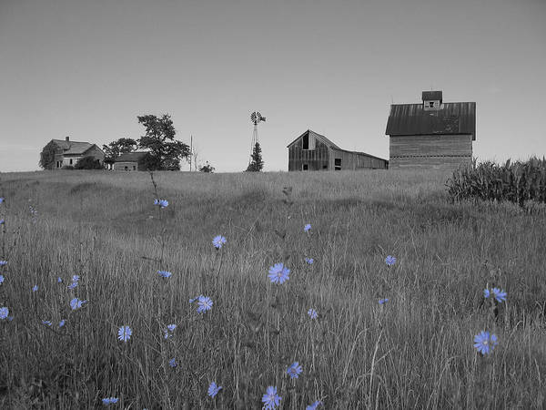 Landscape Art Print featuring the photograph Odell Farm IV by Dylan Punke