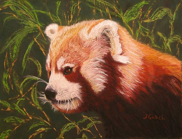 Pastel Art Print featuring the pastel Red Panda 2 by Laura Gabel