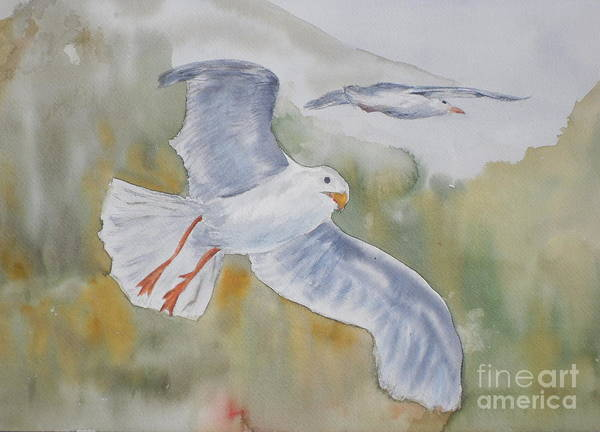 Souring Art Print featuring the painting Seagulls Over Glacier Bay by Vicki Housel