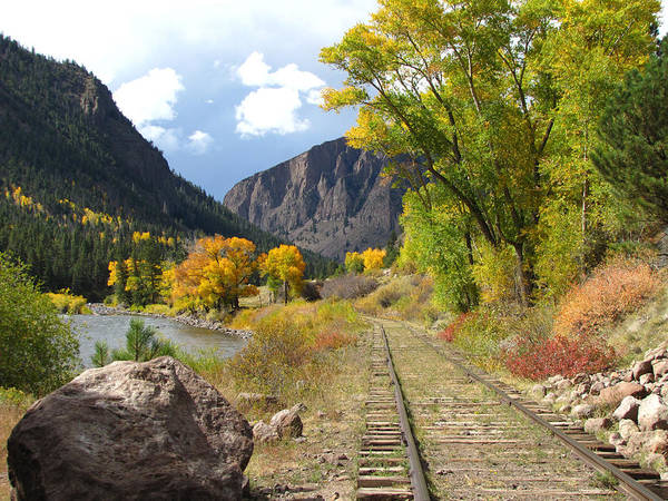 Train Art Print featuring the photograph South Fork by Carol Milisen