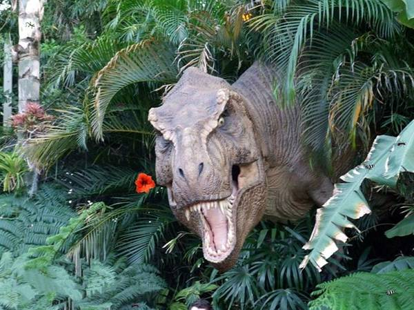 Dinosaur Art Print featuring the photograph The Dinosaurs Lunch by Rana Adamchick