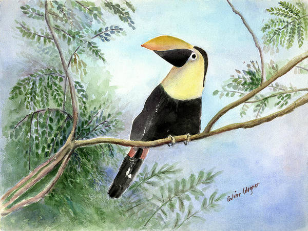 Toucan Art Print featuring the painting Toucan by Arline Wagner