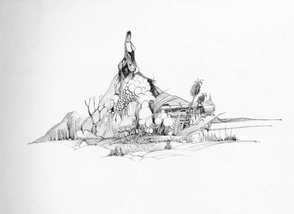 Nature Art Print featuring the drawing Treasure and the rock by Padamvir Singh