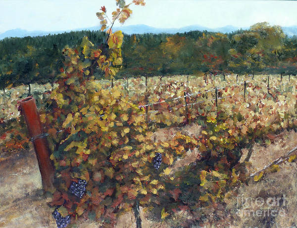 Northern Art Print featuring the painting Vineyard Lucchesi by Randy Sprout