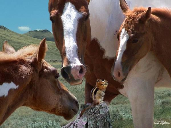 Horses Art Print featuring the mixed media Watizit by Bill Stephens