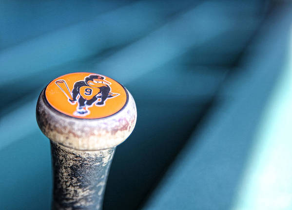 American League Baseball Art Print featuring the photograph Baltimore Orioles V Detroit Tigers by Leon Halip