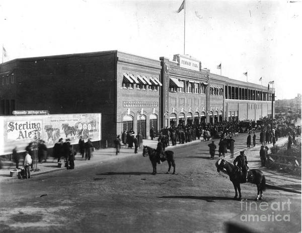 Horse Art Print featuring the photograph National Baseball Hall Of Fame Library by National Baseball Hall Of Fame Library
