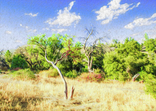 Outdoors Art Print featuring the digital art A Place of Serenity III by Kenneth Montgomery