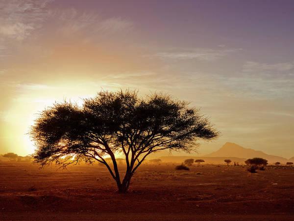 Tranquility Art Print featuring the photograph Burning Desert by Bernd Schunack