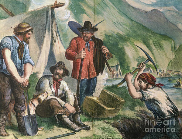 Miner Art Print featuring the photograph California Gold Diggers Illustration by Bettmann