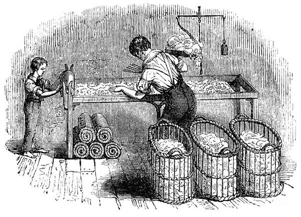 Working Art Print featuring the drawing Cotton Manufacture, C1845 by Print Collector