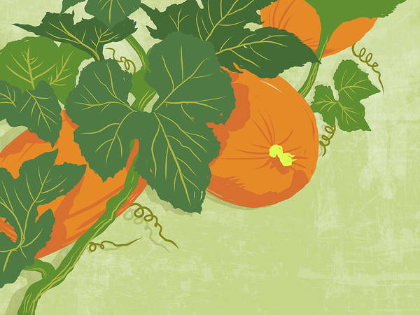Part Of A Series Art Print featuring the digital art Graphic Illustration Of Pumpkins by Don Bishop