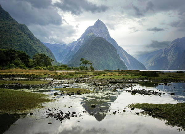 Tranquil Scene Art Print featuring the photograph Milford Sound, South Island, New Zealand by Ed Freeman