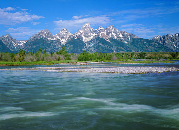 Spring In The Grand Teton National Park Art Print By Ron Thomas