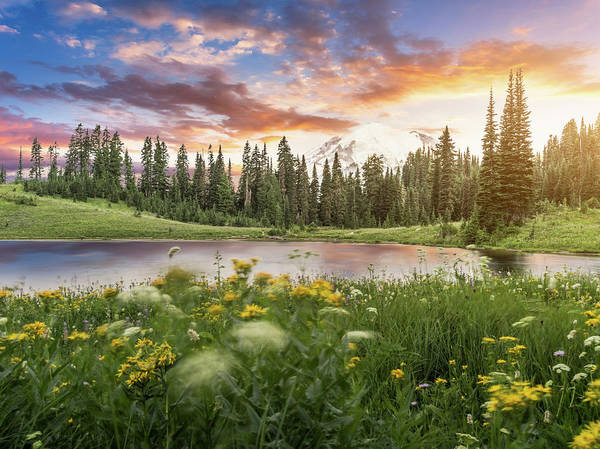 Scenics Art Print featuring the photograph Tipsoo Lake Of Mt.rainier by Chinaface