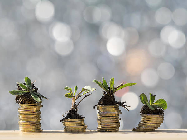 New Business Art Print featuring the photograph Heaps of coins of Euro with green natural plants it they are born, illuminated by the light of the sun by Jose A. Bernat Bacete