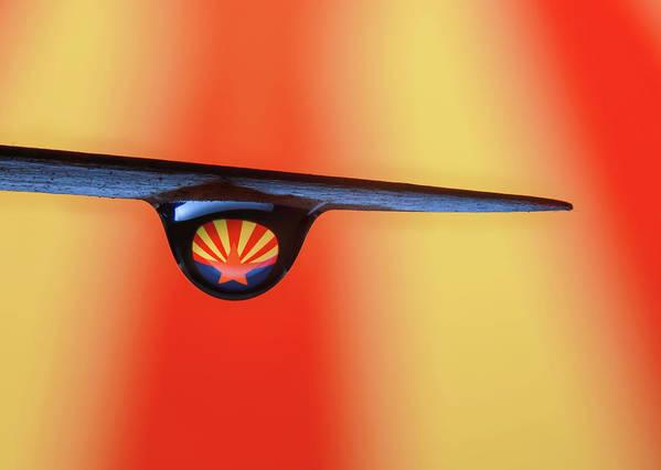 Macro Art Print featuring the photograph Arizona by Jim Painter