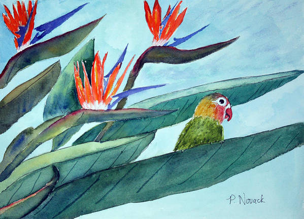 Bird Art Print featuring the painting Bird In Paradise by Patricia Novack