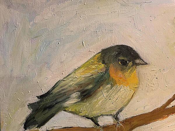 Birdy McBird Face by River Jazz
