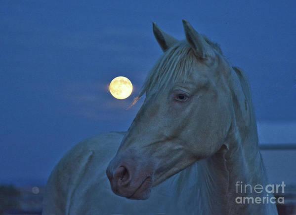 Blue Diablo Full Moon by Lona Patton
