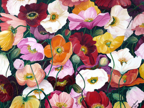 Flower Painting Floral Painting Poppy Painting Icelandic Poppies Painting Botanical Painting Original Oil Paintings Greeting Card Painting Art Print featuring the painting Cascade Of Poppies by Karin Dawn Kelshall- Best